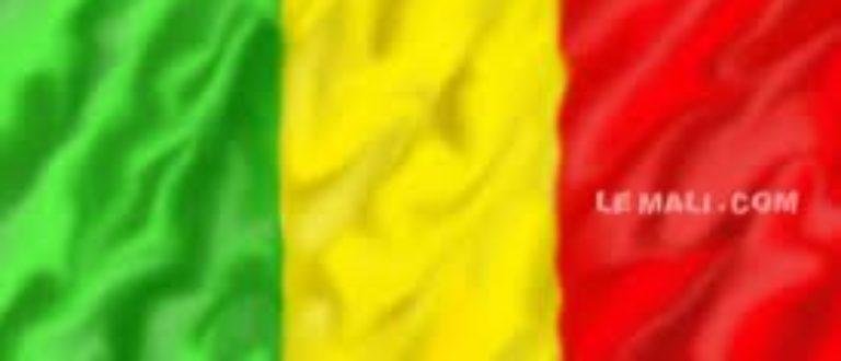 Article : La chronique de l'Etudiant malien: Être malien aujourd'hui