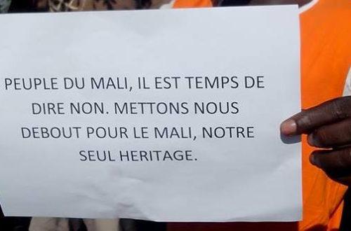 Article : Le Mali est-il récupérable ?